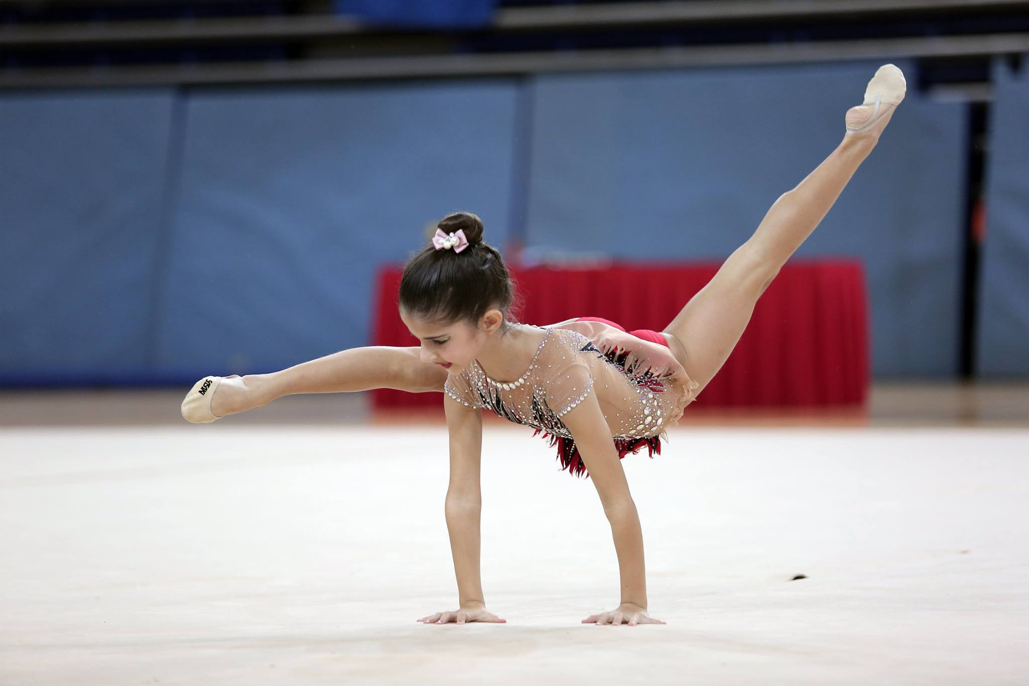 Singapore Gymnastics Open Championships 2017 3
