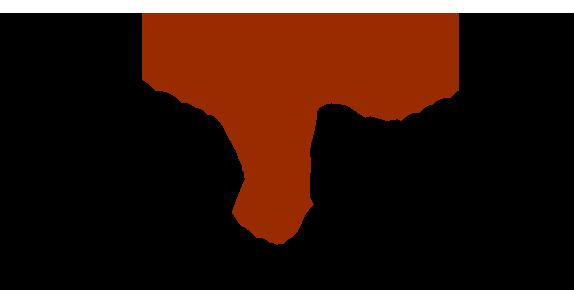 Singapore Gymnastics Logo